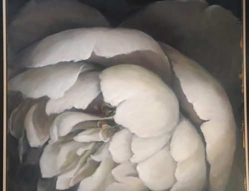 Blooms of Vanilla Meringue 2 80 x 80cm