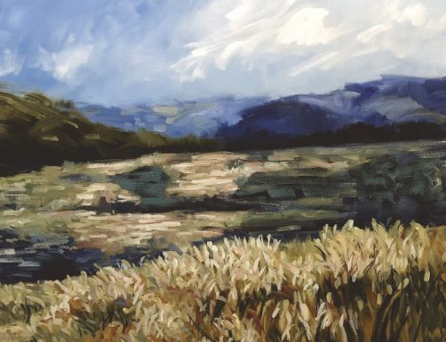 EVENING LIGHT IN THE VALLEY POKOLBIN 110 X 120CM