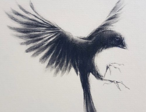 SHADOW BIRD 28 X 28CM
