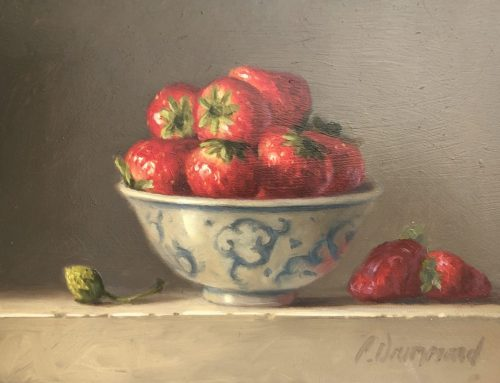 STRAWBERRIES 23 X 30CM